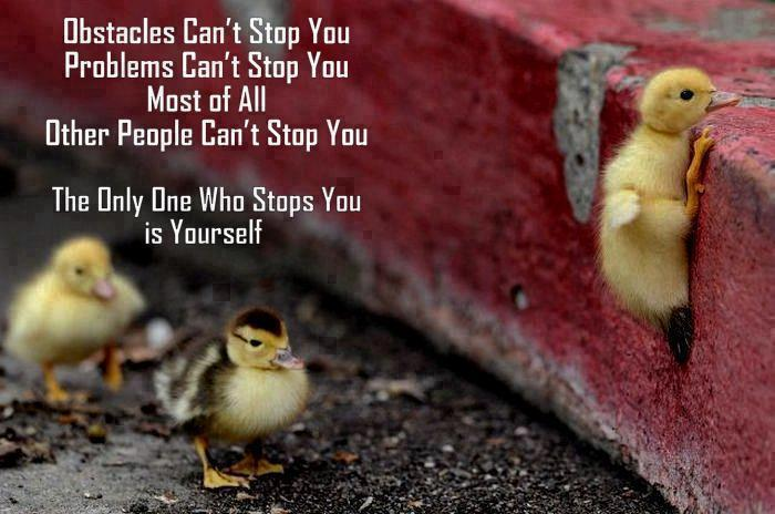 Obstacles Can't Stop You Problems Can't Stop You Most Of All Others People Can't Stop You The Only One Who Stops You Is Yourself