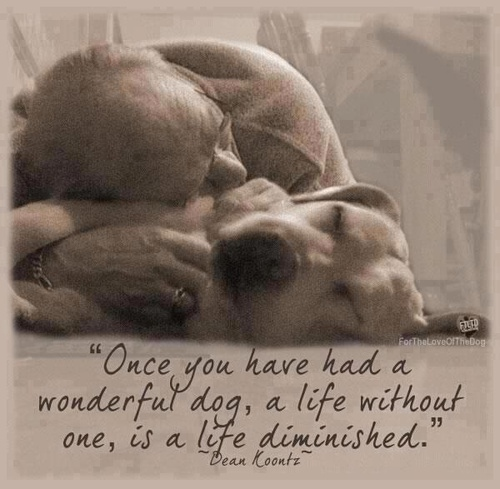 """""""Once You Have Had A Wonderful Dog, A Life Without One, Is A Life Diminished"""" - Dean Koontz"""