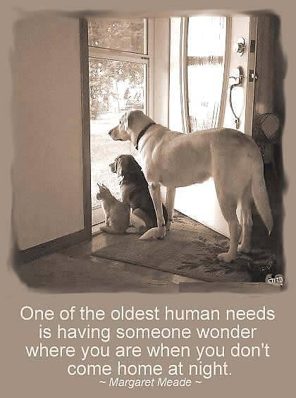 One Of The Oldest Human Needs Is Having Someone Wonder Where You Are When You Don't Come Home At Night - Margaret Meade