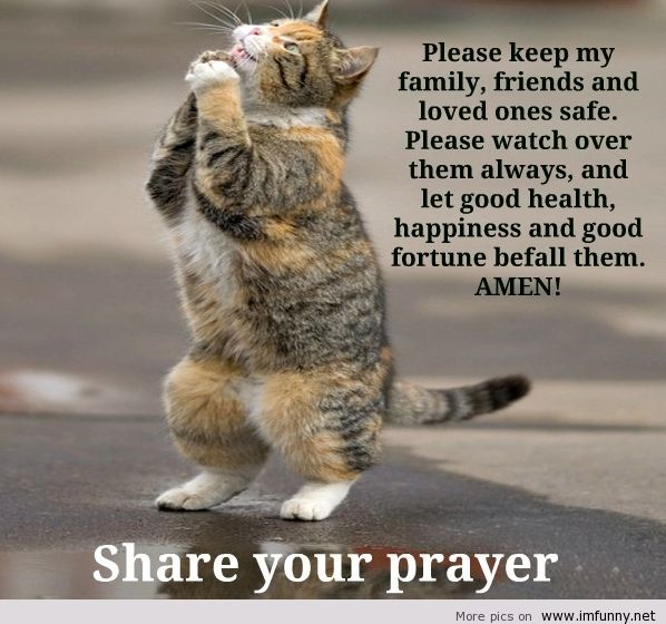 Please Keep My Family, Friends And Loved Ones Safe. Please Watch Over Them Always, And Let Good Health, Happiness And Good Fortune Befall Them. Amen!