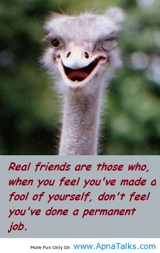 Real Friends Are Those Who, When You Feel You've Made A Fool Of Yourself, Don't Feel You've Done A Permanent Job