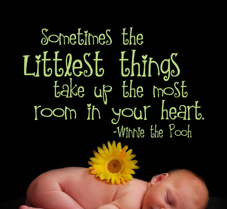 Sometimes The Littlest Things Take Up The Most Room In Your Heart. - Winnie The Pooh