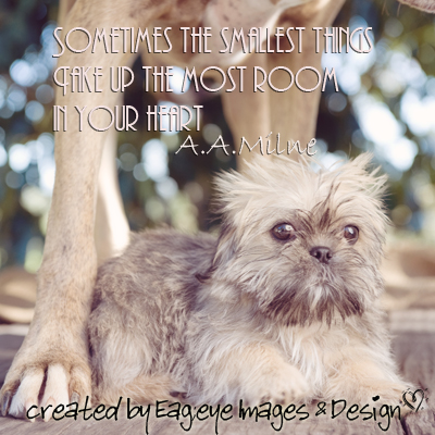 Sometimes The Smallest Thing Take Up The Most Room In Your Heart - A.A. Milne