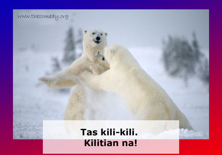 Tas Kili-Kili. Kilitian Na! Animal Funny Quote
