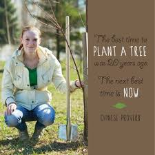The Best Time To Plant A Tree Was 20 Years Ago The Next Best Time Is Now.