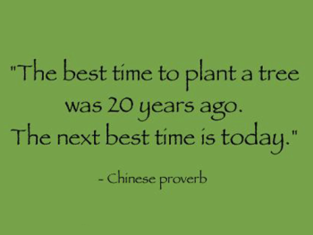 """ The Best Time To Plant A Tree Was 20 Years Ago. The Next Best Time Is Today. """