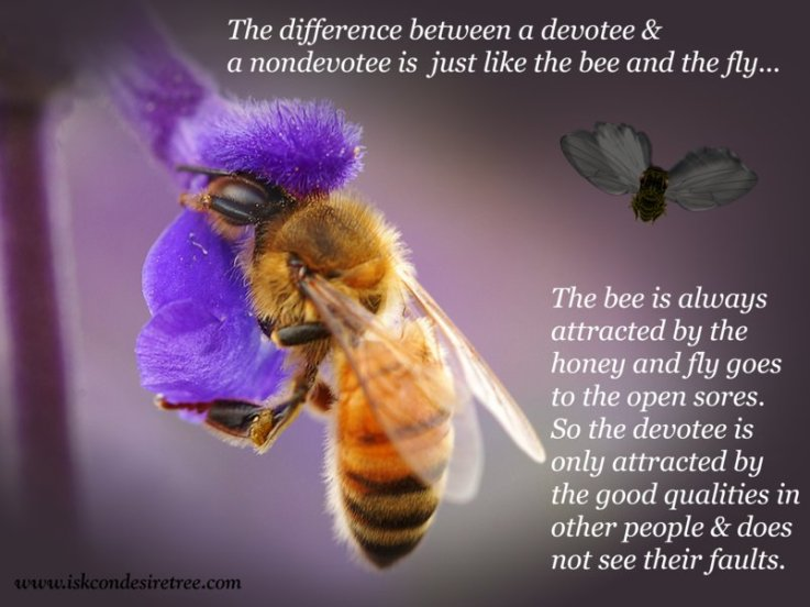 The Difference Between A Devotee & A Nondevotee Is Just LIke The Bee And The Fly….