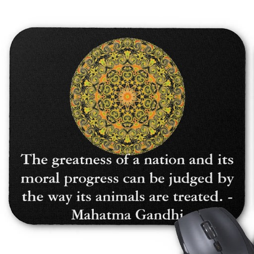 The Greatness Of A Nation And Its Moral Progress Can Be Judged By The Way Its Animals Are Treated - Mahatma Gandhi
