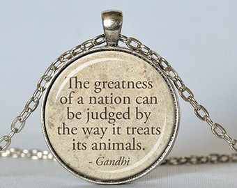 The Greatness Of A Nation Can Be Judged By The Way It Treats Its Animals