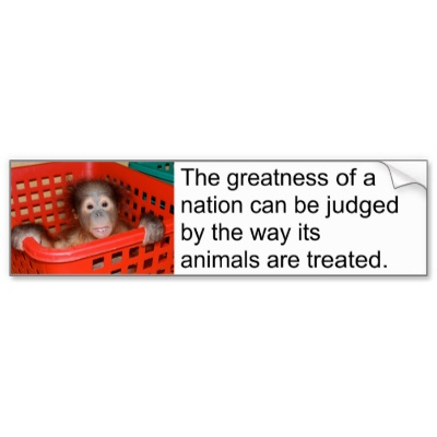 The Greatness Of A Nation Can Be Judged By The Way Its Animals Are Treated