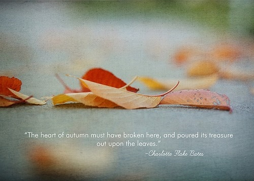 """ The Heart Of Autumn Must Have Broken Here, And Poured In Treasure Out Upon The Leaves """