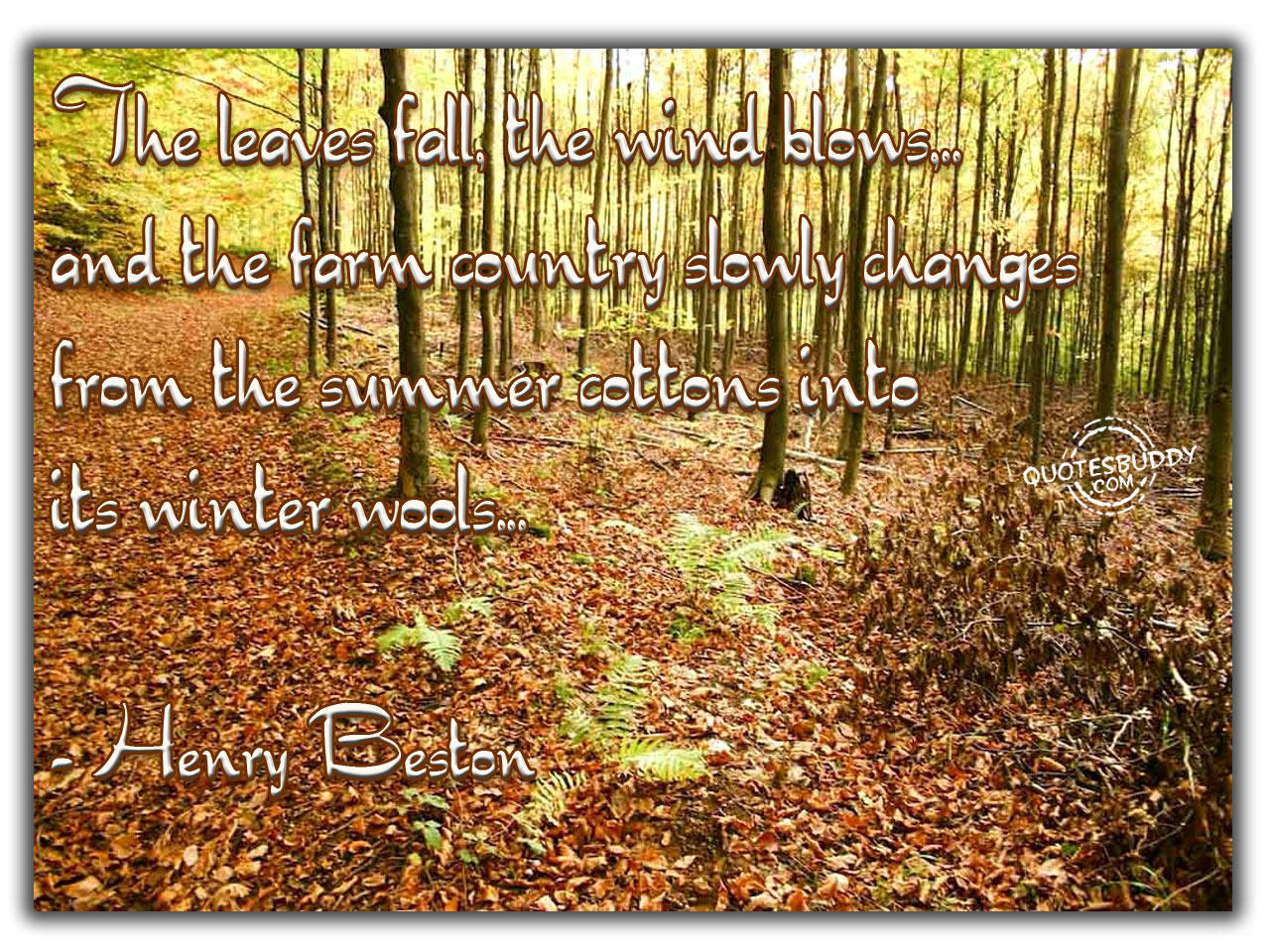 The Leaves Fall, The Wind Blows, And The Farm Country Slowly Changes From The Summer Cottons Into Its Winter Wools - Henry Boston
