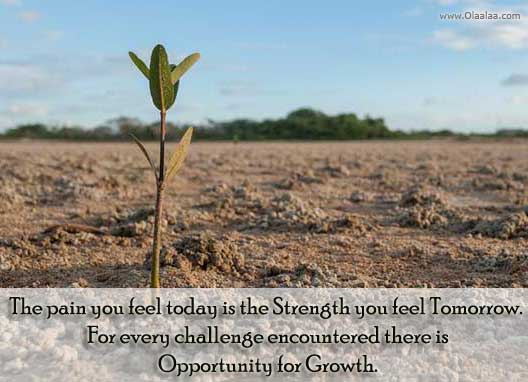 The Pain You Feel Today Is The Strength You Feel Tomorrow. For Every Challenge Encountered There Is Opportunity For Growth