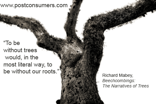 """"""" To Be Without Trees Would, In The Most Literal Way, To Be Without Our Roots """" - Richard Mabey"""