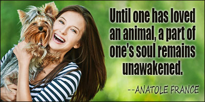 Until One Has Loved An Animal, A Part Of One's Soul Remains Unawakened - Anatole France
