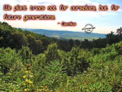 We Plant Trees Not For Ourselves, But For Future Generations. - Caecilius