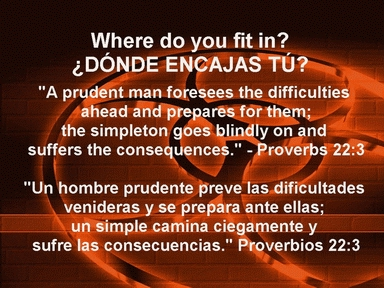 Where Do You Fit In! Donde Encajas Tu!
