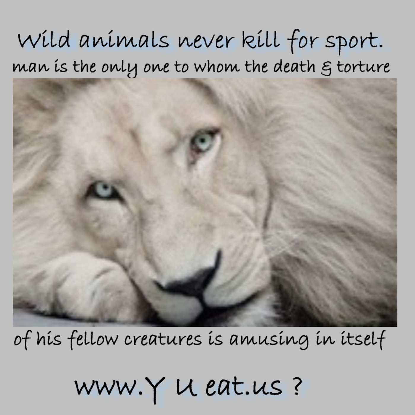 Wild Animals Never Kill For Sport. Man Is The Only One To Whom The Death & Torture Of His Felloe Creatures Is Amusing In Itself