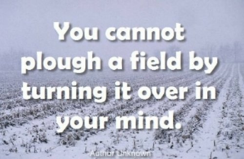 You Cannot Plough a Field By Turning It Over In Your Mind