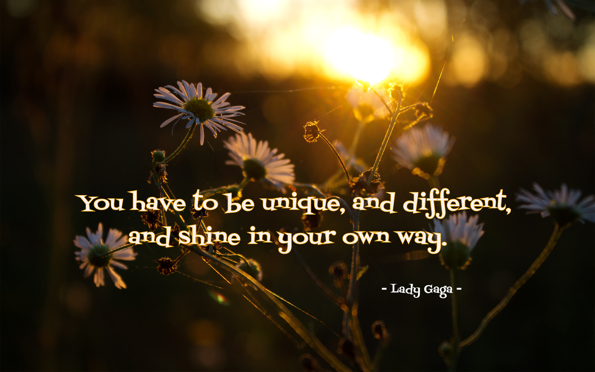 You Have To Be Unique, And Different, And Shine In Your Own Way