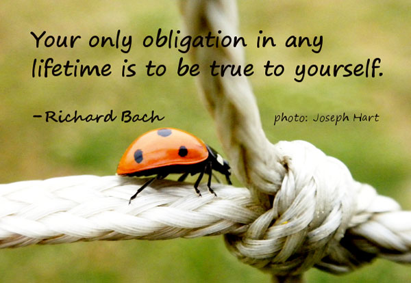 Your Only Obligation In Any Lifetime Is To Be True To Yourself - Richard Bach
