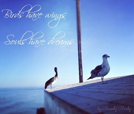 http://quotespictures.com/birds-have-wings-souls-have-dreams/