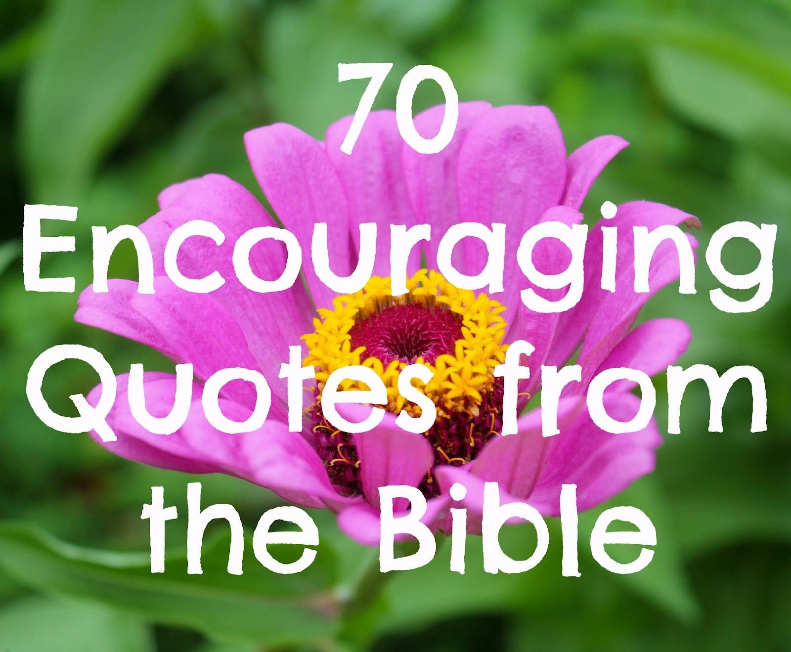 Bible Inspirational Quotes About Life Bible Quotes Pictures And Bible Quotes Images  35