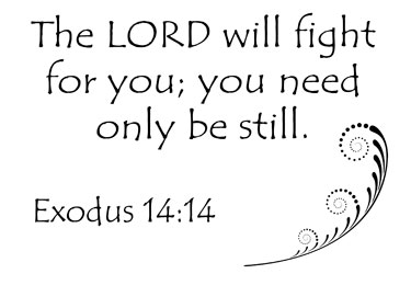 the lord will fight for you you need only be still