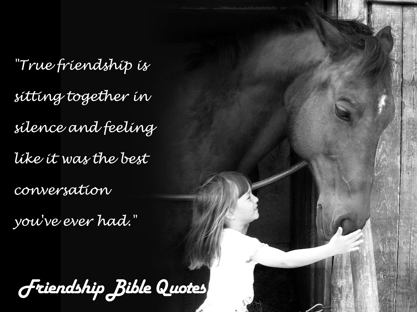 Quotes About True Friendship In The Bible : Bible quotes about true friendship quotesgram