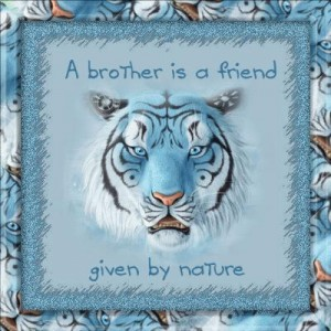 A Brother Is A Friend Give By Nature.