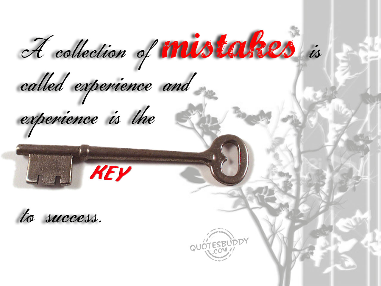 A Collection Of Mistakes Is Called Experience And Experience Is The Key To Success.