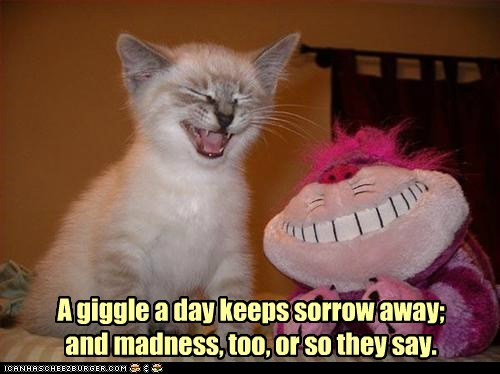 A Giggle A Day Keeps Sorrow Away, And Madness, Too,  Or So They Say. ~ Cat Quotes