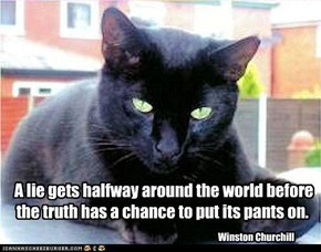 A Lie Gets Halfway Around The World Before The Truth Has A Chance To Put Its Pants On. - Winston Churchill ~ Cat Quotes