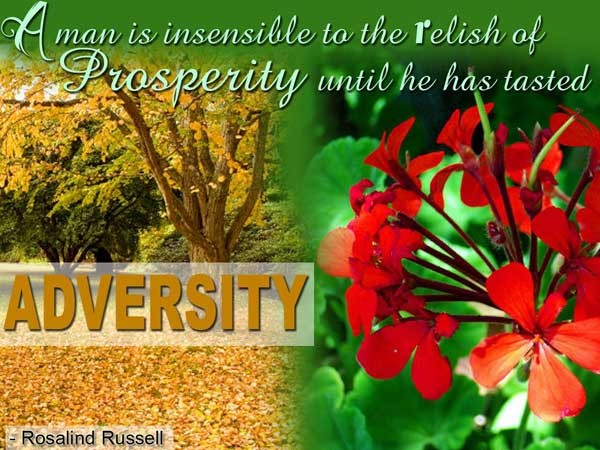 A Man Is Insensible To The Relish Of Prosperity Until He Has Tasted Adversity. - Rosalind Russell
