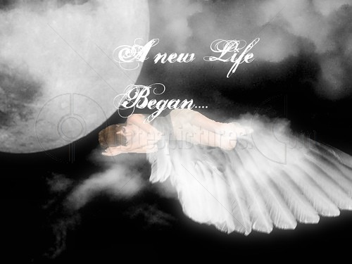 A New Life Began Angel Quote