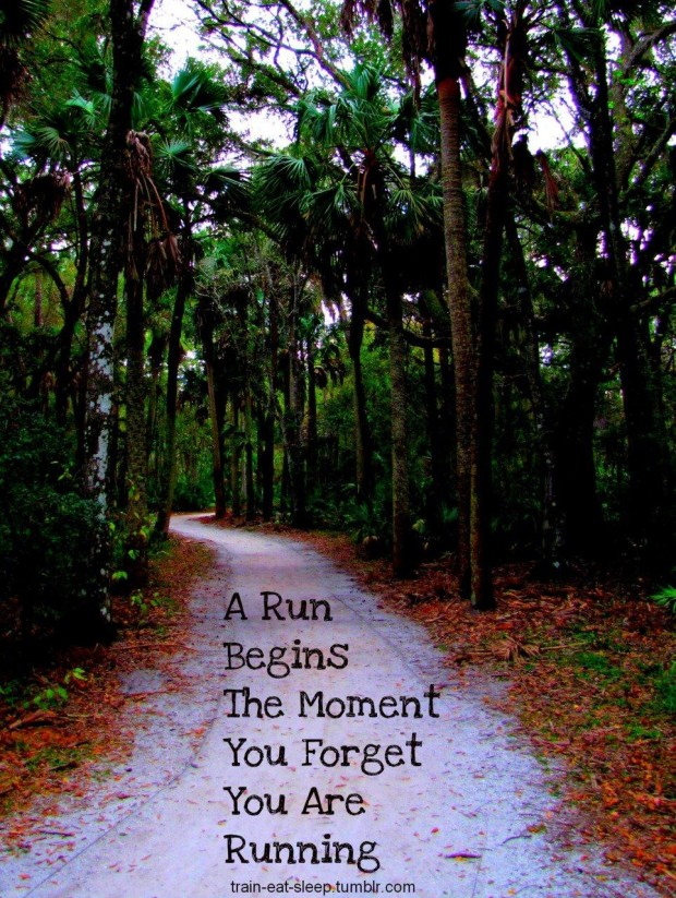 A Run Begins The Moment You Forget You Are Running. ~ Body Quotes