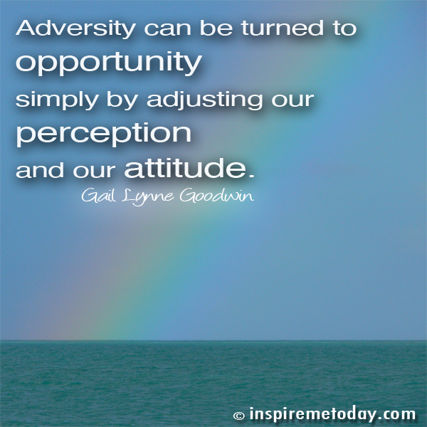 Adversity Can Be Turned To Opportunity Simply By Adjusting Our Perception And Our Attitude. - Gail Lynne Goodwin