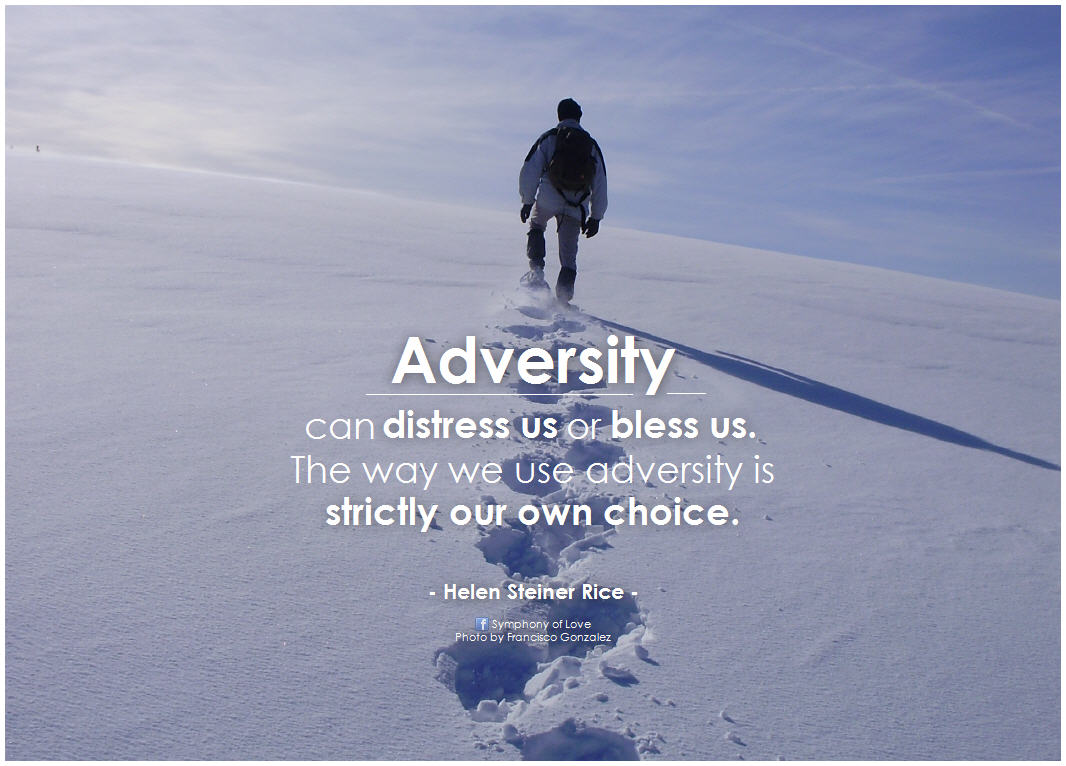 Adversity Can Distress Us Or Bless Us. The Way We Use Adversity Is Strictly Our Own Choice. - Helen Steiner Rice