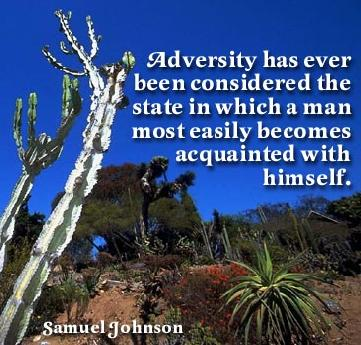 Adversity Has Ever Been Considered The State In Which A Man Most Easily Becomes Acquainted With Himself.