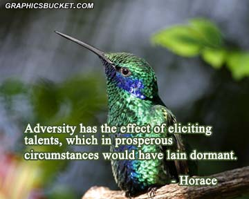 Adversity Has The Effect Of Elicting Talents, Which In Prosperous Circumstances Would Have Lain Dormant. - Horace