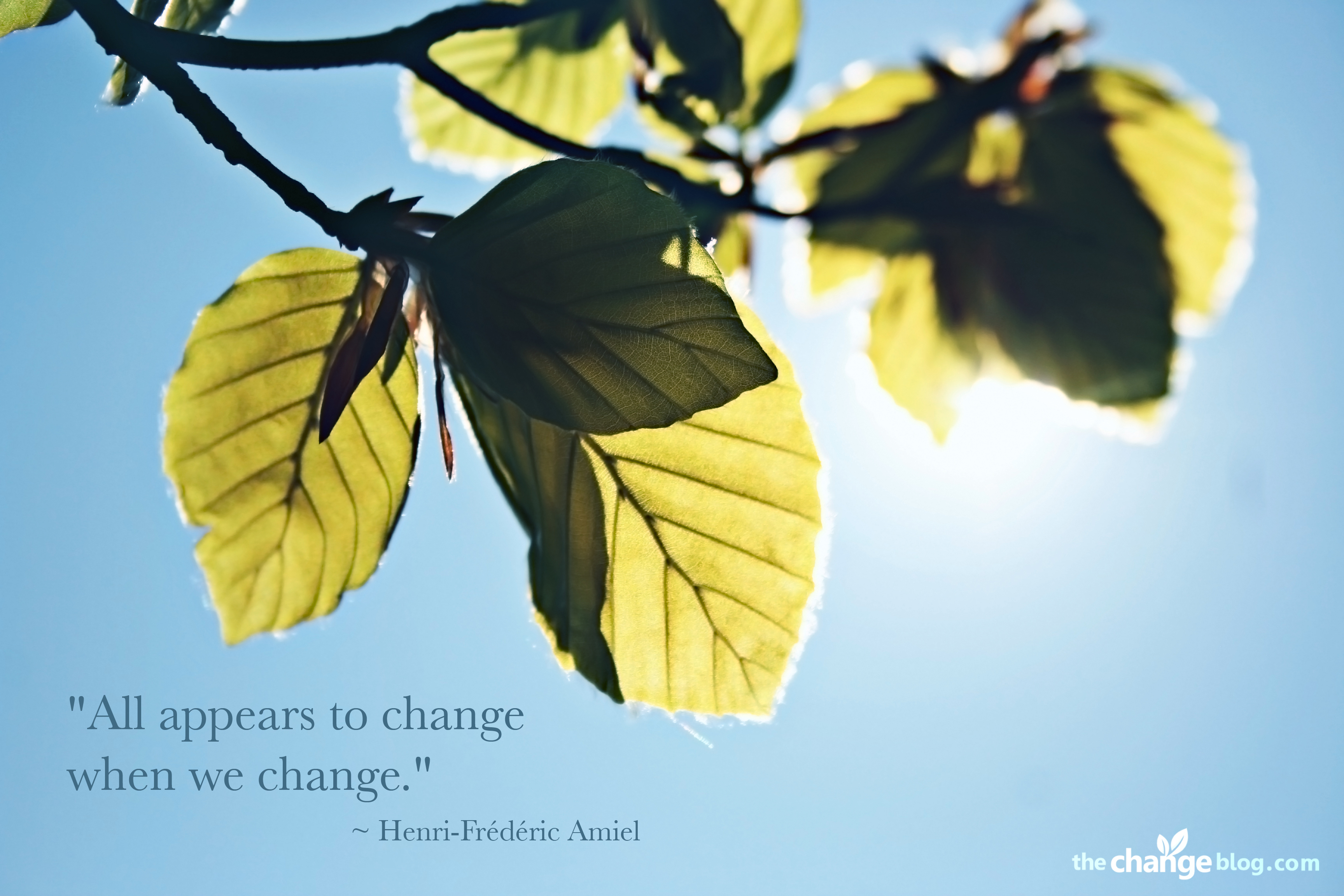 """ All Appears To Change When We Change "" - Henri Frederic Amiel"