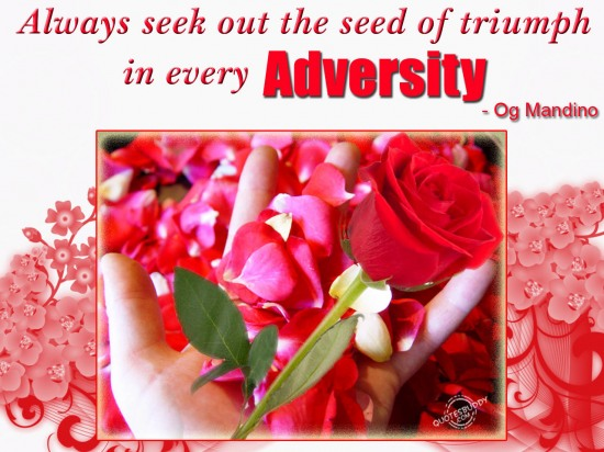 Always Seek Out The Seed Of Triumph In Every Adversity. - Og Mandino