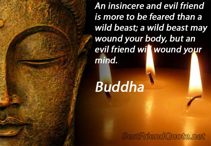 """ An Insincere And Evil Friend Is More To Be Feared Than A Wild Beast, A Wild Beast May Wound Your Body, But An Evil Friend Will Wound Your Mind "" - Buddha"