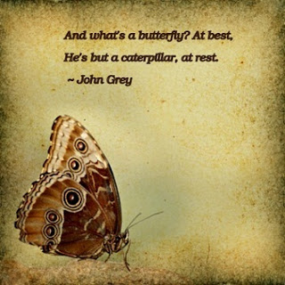 And What's A Butterfly, At Best, He's But A Caterpillar, At Rest. - John Grey