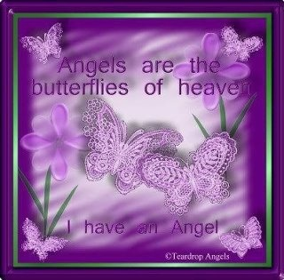 Angels Are The Butterflies Of Heaven. I Have An Angel
