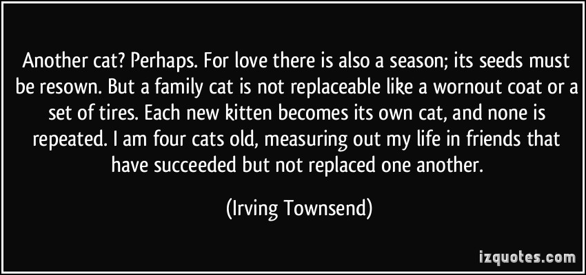 Another Cat, Perhaps For Love There Is Also A Season Its Seeds Must Be Resown But A Family Cat Is Not Replaceable Like A Wornout Coat Or A Set Of Tires….. - Irving Townsend