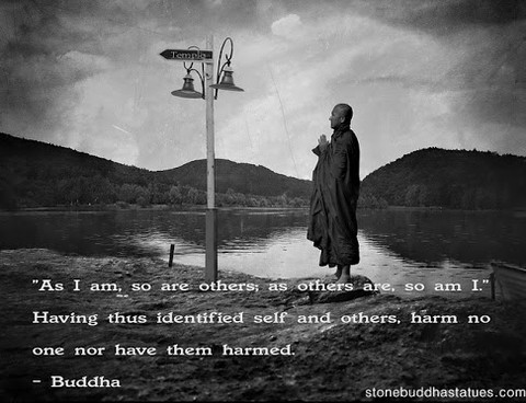 """ As I Am, So Are Others, As Others Are, So Am I "" Having Thus Identified Self And Others, Harm No One Nor Have Them Harmed. - Buddha"
