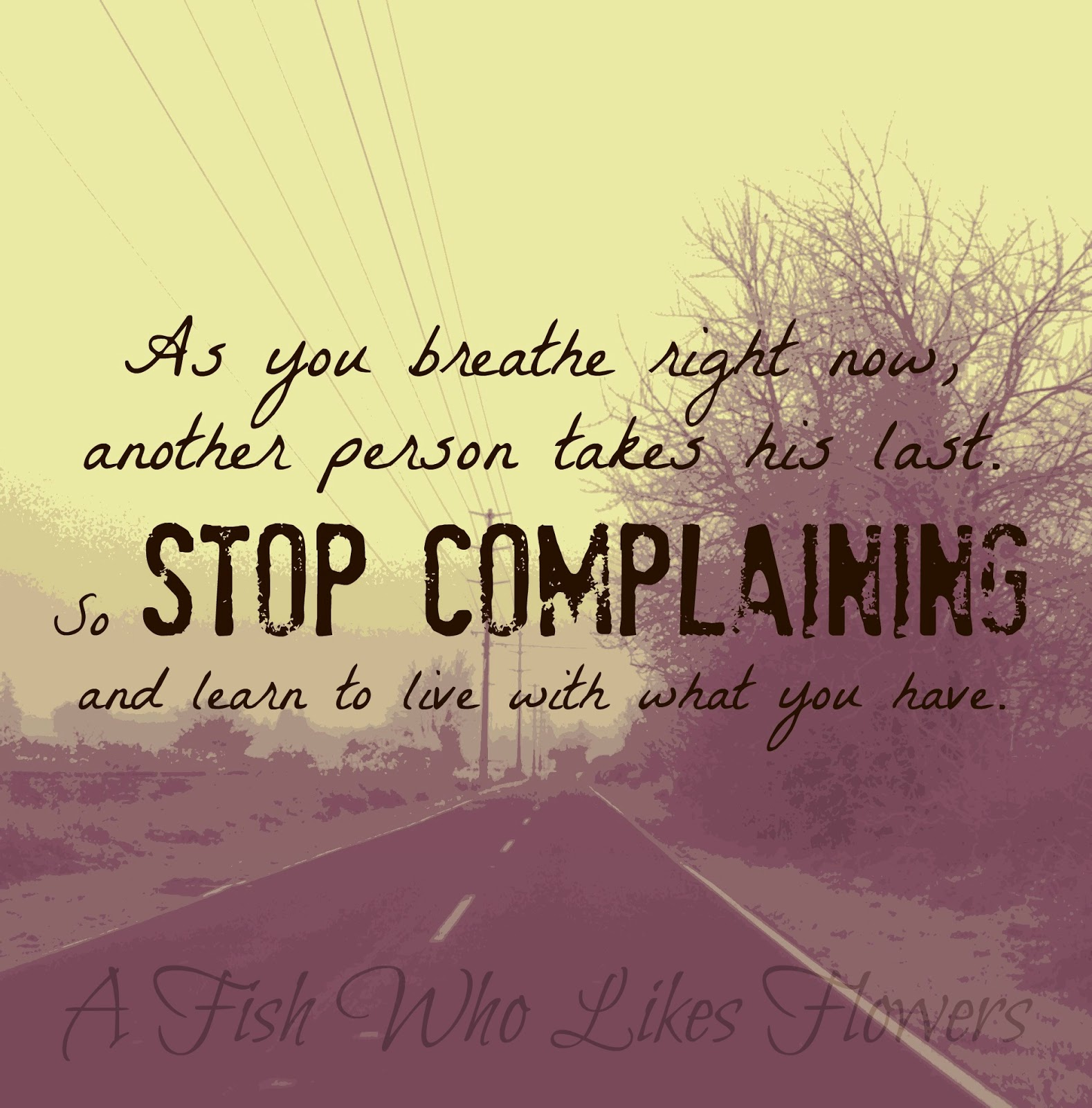 As You Breathe Right Now, Another Person Takes His Last. So Stop Complaining And Learn To Love With What You Have.