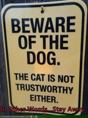Beware Of The Dog. The Cat Is Not Trustworthy Either.