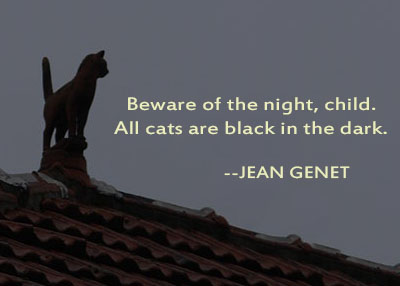 Beware Of The Night, Child. All Cats Are Black In The Dark. - Jean Genet
